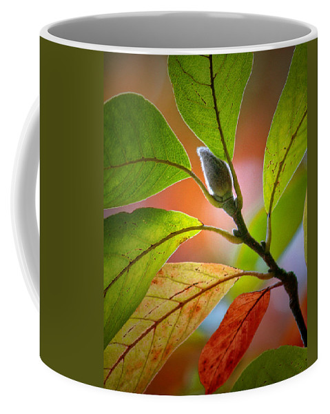 Art Coffee Mug featuring the photograph Red Magnolia Leaves With Bud by Randall Nyhof