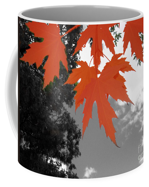 Scene Coffee Mug featuring the photograph Red Maple Leaves by Mary Mikawoz
