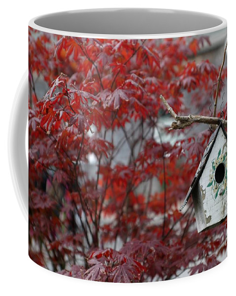 Tree Coffee Mug featuring the photograph Red Maple by Living Color Photography Lorraine Lynch