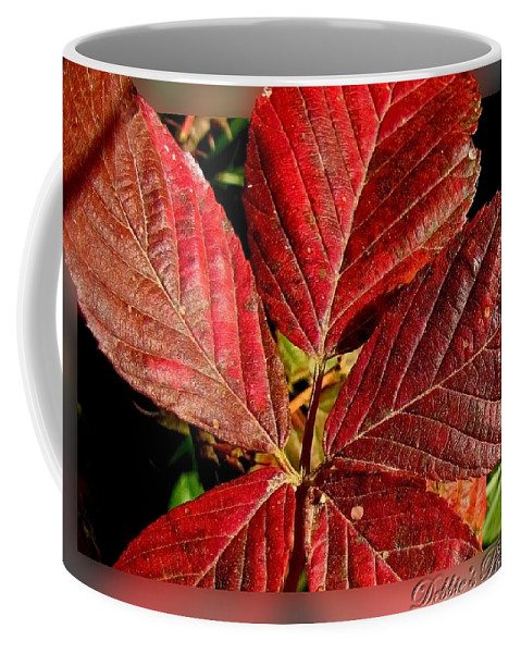 Botanical Coffee Mug featuring the photograph Red Quintete by Debbie Portwood