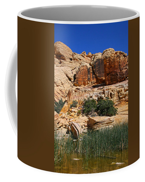 Red Rock Canyon Coffee Mug featuring the photograph Red Rock Canyon The Tank by Chris Brannen