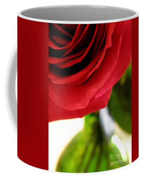 Rose Coffee Mug featuring the photograph Red Rose In Glass Vase by Lainie Wrightson