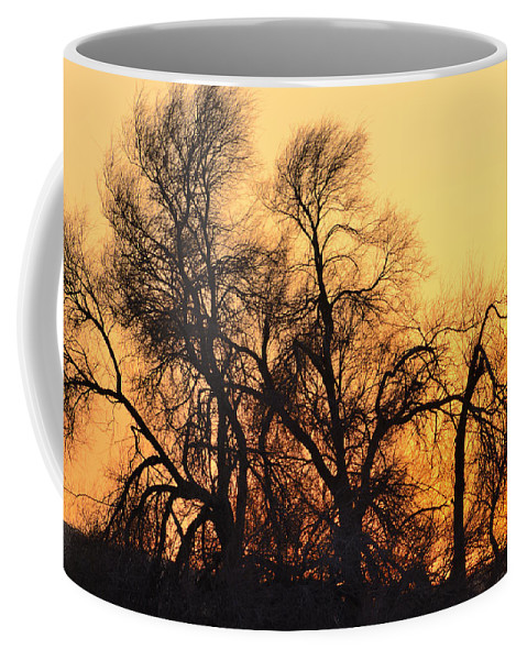 Abstracts Coffee Mug featuring the photograph Red Tree by Guido Montanes Castillo