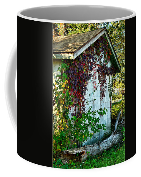 Arcitecture Coffee Mug featuring the photograph Red Vine Shed by Debbie Portwood