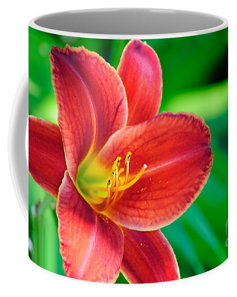 Red Volunteer Coffee Mug featuring the photograph Red Volunteer by Diego Re