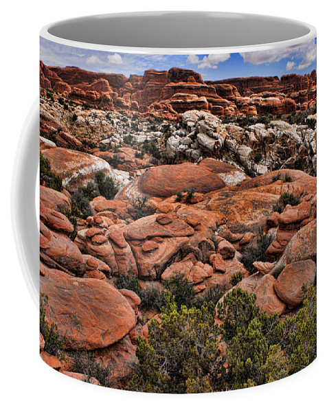 Desert Coffee Mug featuring the photograph Red White And Blue by Karen Ulvestad