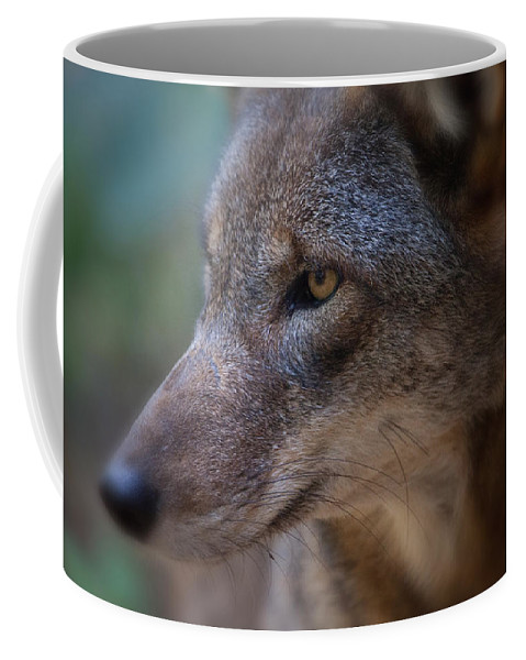 Wolf Coffee Mug featuring the photograph Red Wolf Stare by Karol Livote