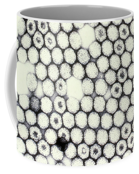 Medical Coffee Mug featuring the photograph Reovirus by Science Source