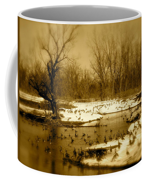 Landscape Coffee Mug featuring the photograph Resting Up by Arthur Barnes
