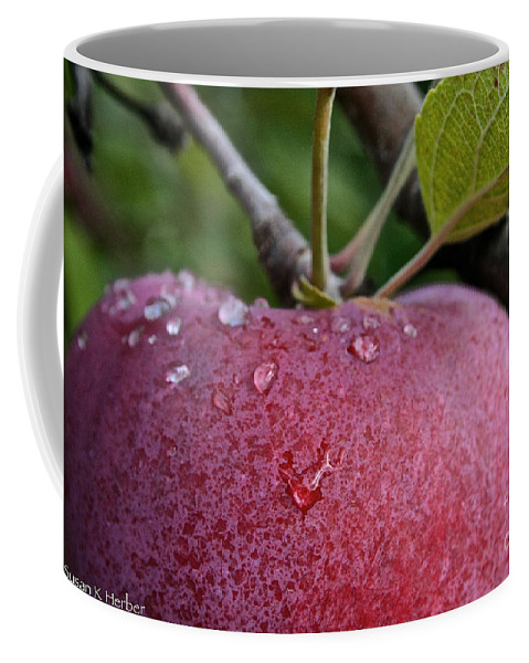 Landscape Coffee Mug featuring the photograph Ripe N Ready by Susan Herber