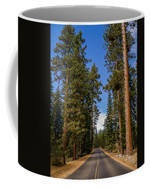 Lassen Volcanic National Park Coffee Mug featuring the photograph Road Through Lassen Forest by Greg Nyquist
