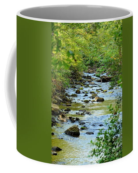 Rock Coffee Mug featuring the photograph Rock Creek Bed by Maria Urso