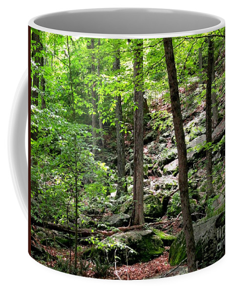 Forest Coffee Mug featuring the photograph Rocky Forest Of Chatfield by Meandering Photography