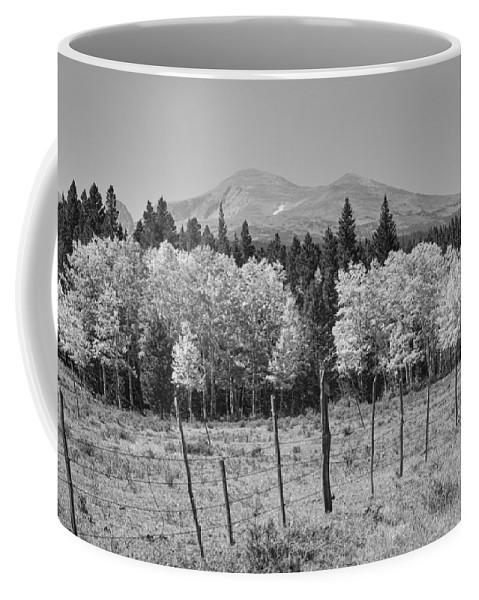 Colorado Coffee Mug featuring the photograph Rocky Mountain High Country Autumn Fall Foliage Scenic View Bw by James BO Insogna