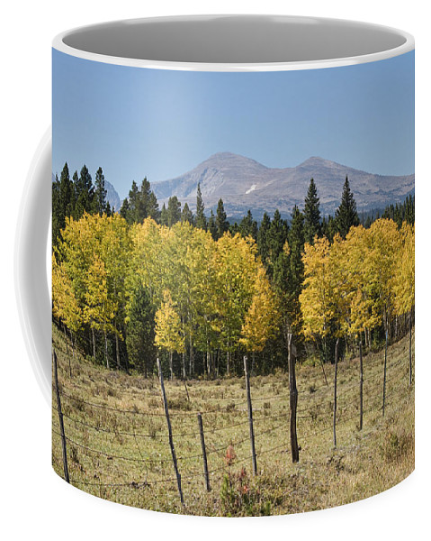 Colorado Coffee Mug featuring the photograph Rocky Mountain High Country Autumn Fall Foliage Scenic View by James BO Insogna