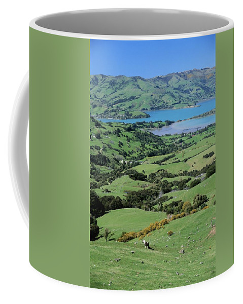 Pacific Islands Coffee Mug featuring the photograph Rolling Fields With Grazing Sheep by Todd Gipstein