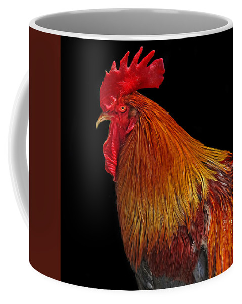 Rooster Coffee Mug featuring the photograph Rooster by Dave Mills