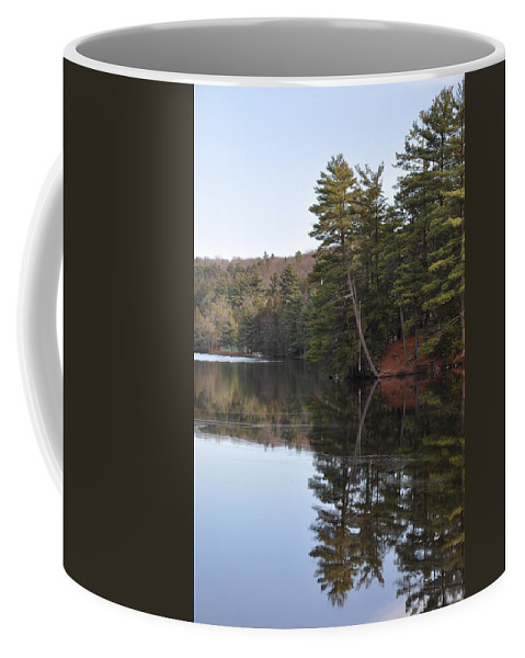 Rope Swing Coffee Mug featuring the photograph Rope Swing On Bear Creek Lake by Bill Cannon