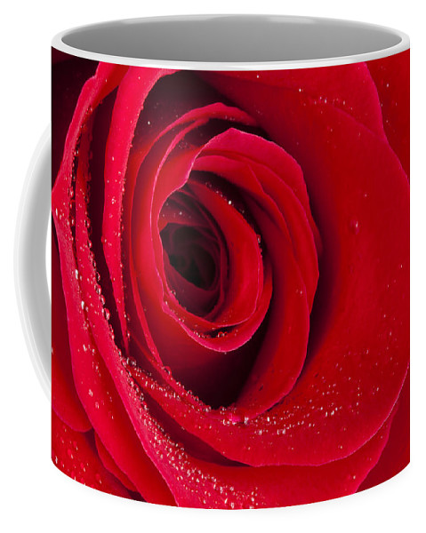 Flower Coffee Mug featuring the photograph Rose Macro Wet 1 C by John Brueske