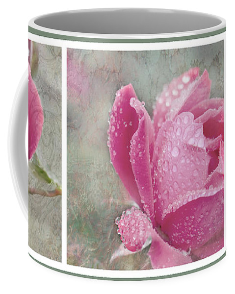Triptych Coffee Mug featuring the photograph Rose Triptych 11 by Betty LaRue