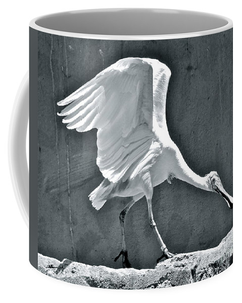 Spoonbill Coffee Mug featuring the photograph Roseate Spoonbill Landing by Carol Bradley