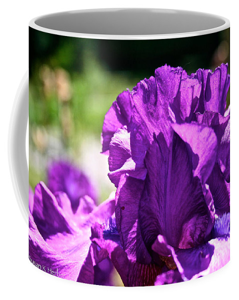 Flower Coffee Mug featuring the photograph Ruffle Top by Susan Herber