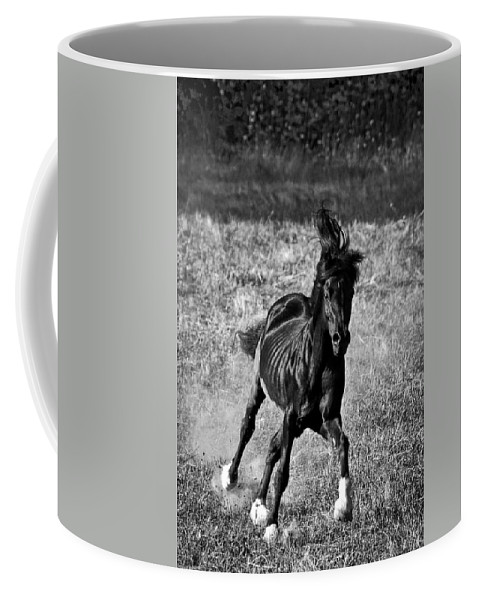 Running Free Coffee Mug featuring the photograph Running Free by Wes and Dotty Weber