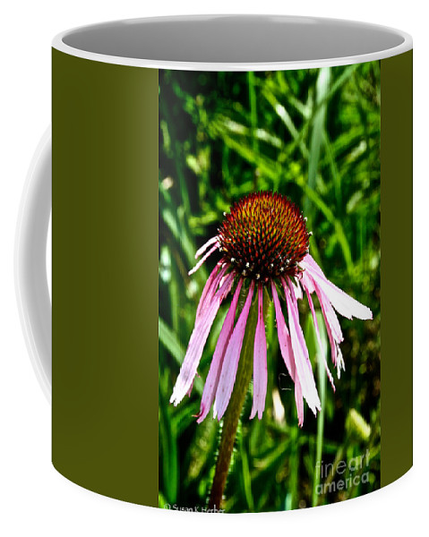 Outdoors Coffee Mug featuring the photograph Sad Cone Flower by Susan Herber