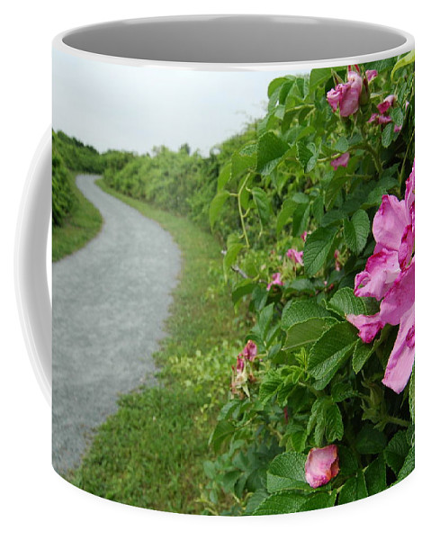 Bird Sanctuary Coffee Mug featuring the photograph Sanctuary Pathway by Mike Nellums