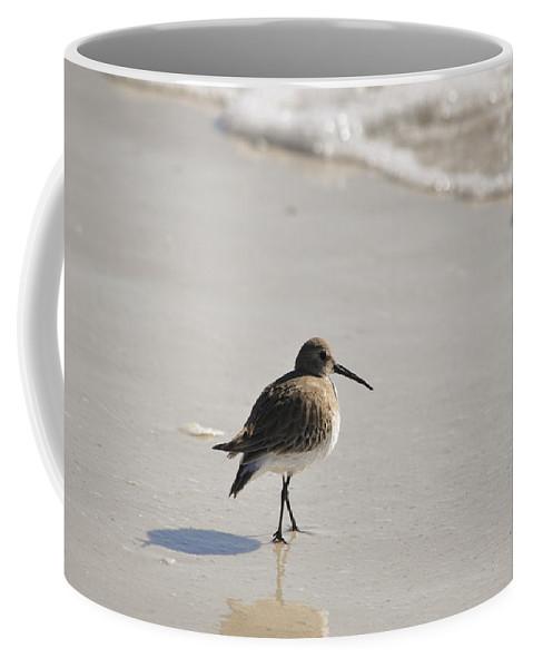 Bird Coffee Mug featuring the photograph Sandpiper by Christine Stonebridge