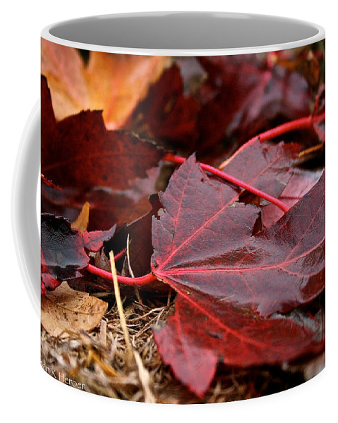 Outdoors Coffee Mug featuring the photograph Saturated Maroon by Susan Herber