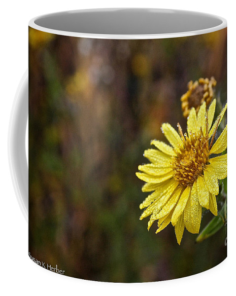 Flower Coffee Mug featuring the photograph Saturday Sunshine by Susan Herber