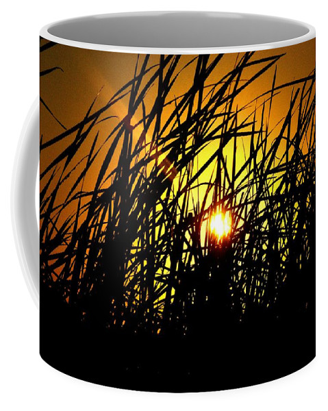 Lake Panasofkee Coffee Mug featuring the photograph Sawgrass Sunrise by Kari Tedrick