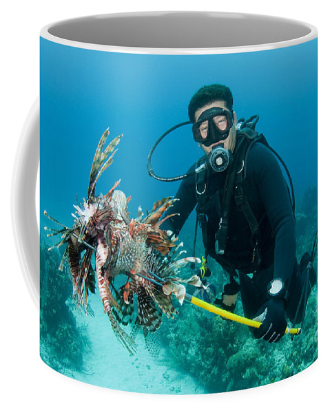 Indo-pacific Coffee Mug featuring the photograph Scuba Diver With Spear Of Invasive by Karen Doody