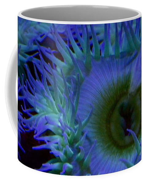 Sea Coffee Mug featuring the photograph Sea Anemone by Xn Tyler