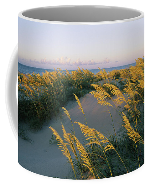 North America Coffee Mug featuring the photograph Sea Oats, Dunes, And Beach At Oregon by Skip Brown