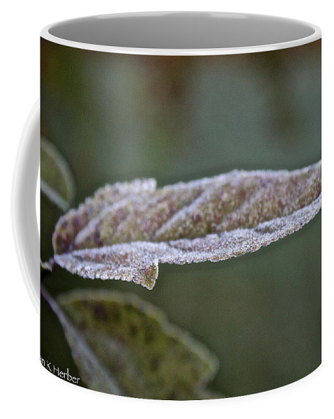 Outdoors Coffee Mug featuring the photograph Seasonal Frost by Susan Herber