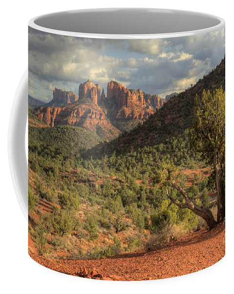 Hdr Coffee Mug featuring the photograph Sedona Red Rock Viewpoint by Sandra Bronstein