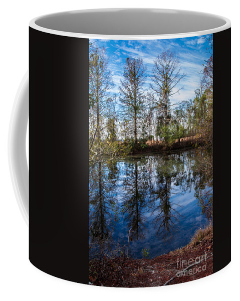 See Coffee Mug featuring the photograph Seeing Double by Scott Hervieux