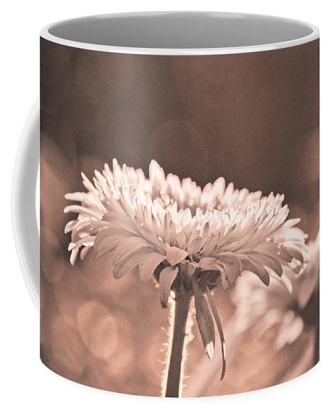 Flower Coffee Mug featuring the photograph Sepia Sweetness by Trish Tritz