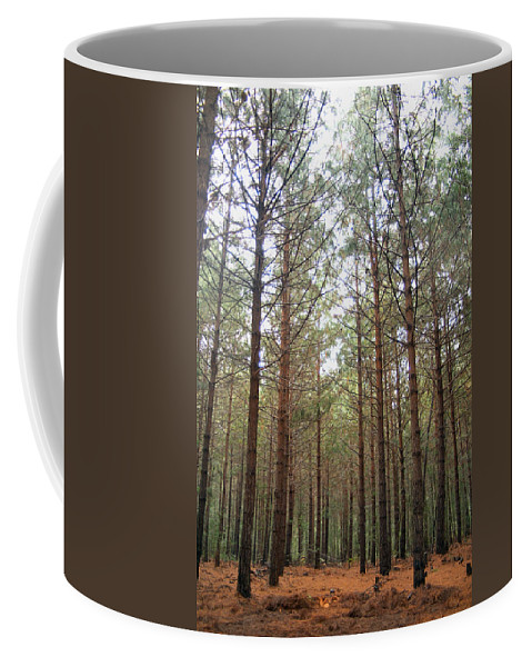 Pine Coffee Mug featuring the photograph Serene Forest by Tracey Beer