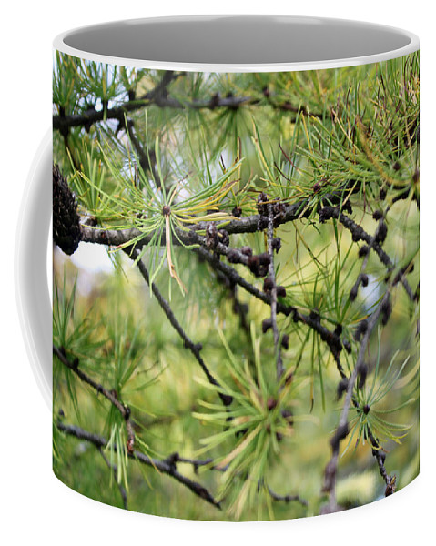Autumn Coffee Mug featuring the photograph Serenity by Munir Alawi