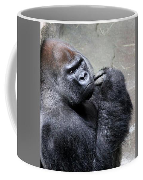 Gorilla Coffee Mug featuring the photograph Serious Look by Rosanne Jordan