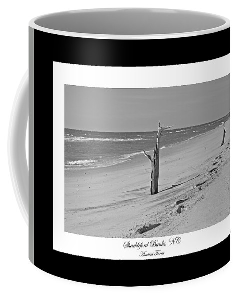 Shackleford Coffee Mug featuring the photograph Shackleford Banks Ancient Forest by Betsy Knapp