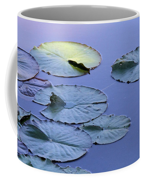 Water Lily Coffee Mug featuring the photograph Shades Of Tranquility by Doris Potter