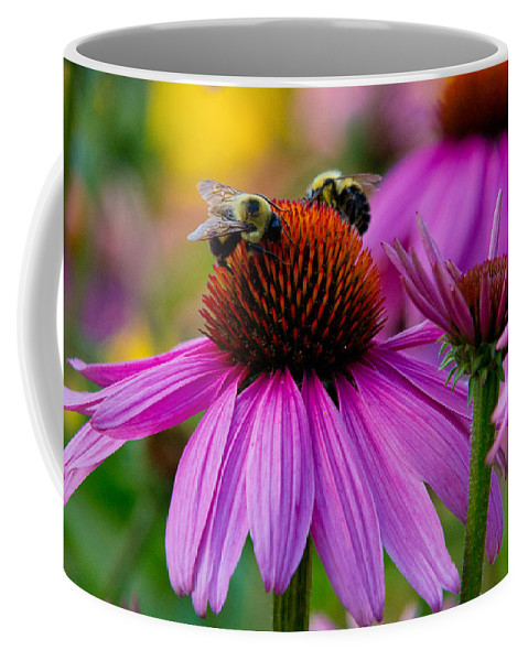 Bees Coffee Mug featuring the photograph Sharing by Frank Pietlock