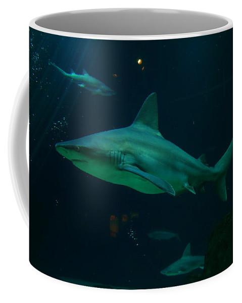 Sharks Coffee Mug featuring the photograph Shark by Jeff Swan