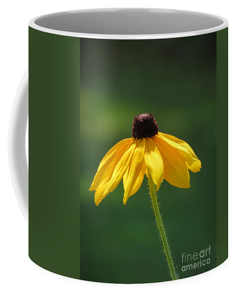 Black Coffee Mug featuring the photograph Shiner by Art Dingo