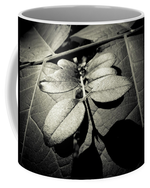 Leaves Coffee Mug featuring the photograph Signs Of Life by Jessica Brawley