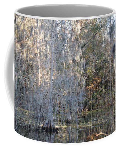 River Coffee Mug featuring the photograph Silver Cypress by Carol Bradley
